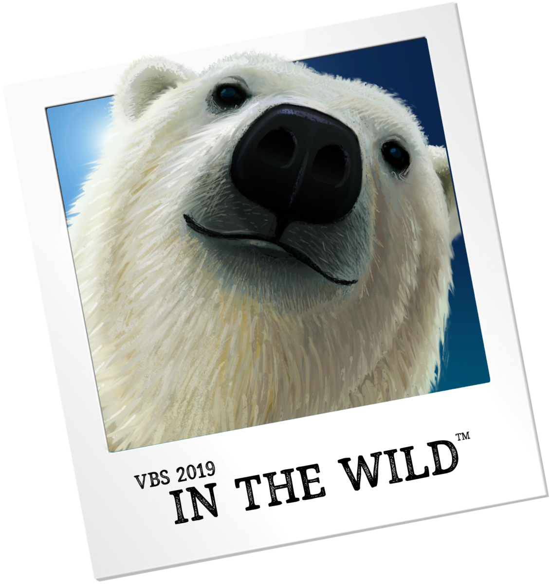 VBS 2019: In The WILD! | Western Springs Baptist Church (The Village