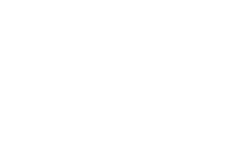 VBS 2019: In The WILD! | Western Springs Baptist Church (The